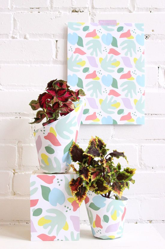 DIY - Printable Wrapping Paper for Plants