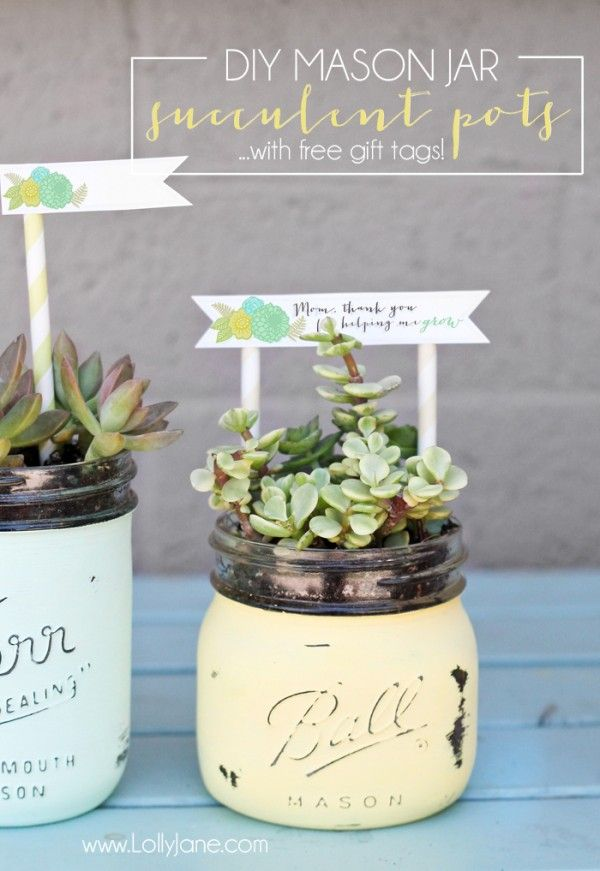 Diy gifts ideas diy mason jar succulent pots with free printable diy gifts 2018 2019 diy mason jar succulent pots with free printable gift tags negle Gallery