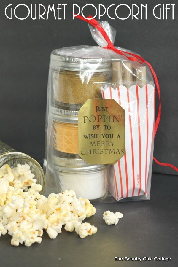 DIY Gifts Ideas : Gourmet Popcorn Gift - add your seasoning mixes to ...