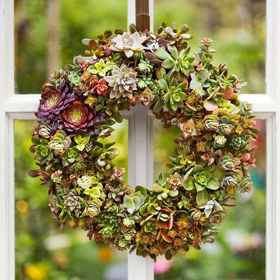 Succulent wreaths made from succulent plants require little water and are a grea...
