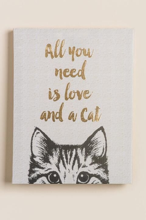 gifts for her all you need is love and a cat giftsdetective