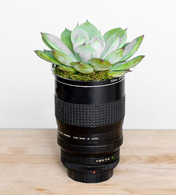 Vintage Camera Lens Planter