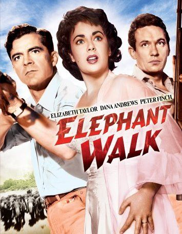 Elephant Walk - movie stars Elizabeth Taylor, Dana Andrews, Peter Finch.