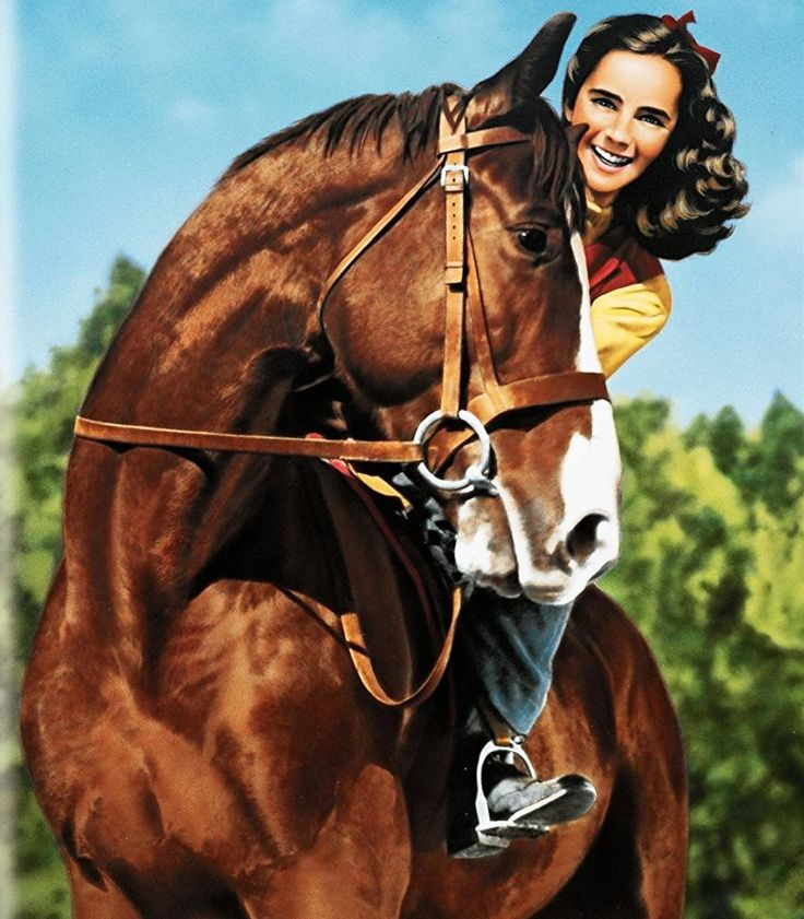 National Velvet - at 12, Elizabeth Taylor won our hearts. Horse movies.