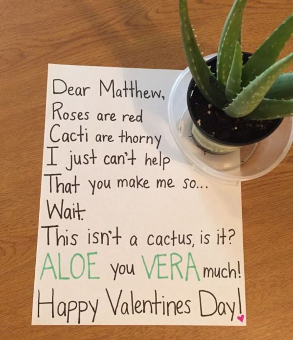 Valentines Day Humor (Valentins Day Puns Candy)
