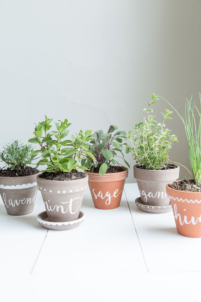 DIY Wrapping Gifts Inspiration : DIY Labeled Indoor Herb Planters ...