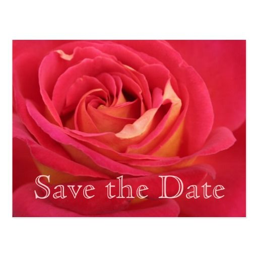 Birthday Gifts Ideas Rose Save The Date 90th Celebration