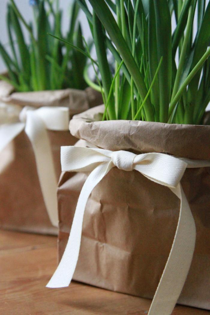 A brown paper bag hides a plastic black pot; Gardenista