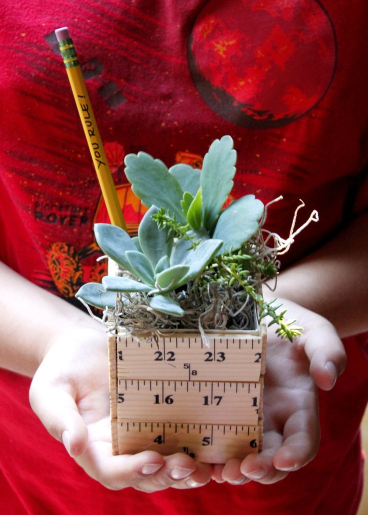 Learn how to make a sweet back to school teacher gift planter made with rulers a...