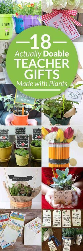 18 beautiful plant gifts for teachers with free printables, affordable teacher p...