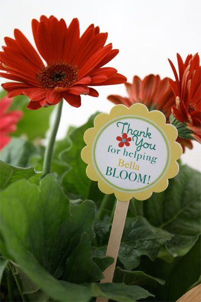 Teacher Appreciation Gift Idea: flowers with free printable gift tag