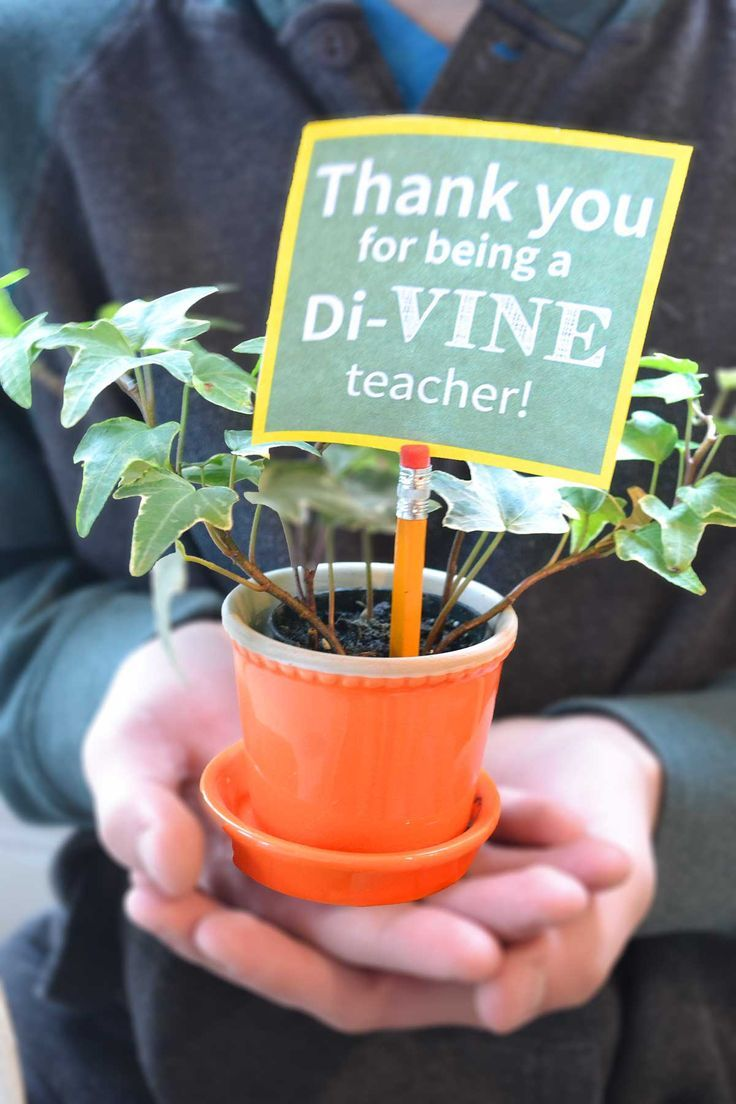 All you need to create this cute gift is a vine, pot, pencil, and tag. I've ...