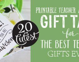 Printable Teacher Appreciation Ideas and Tags