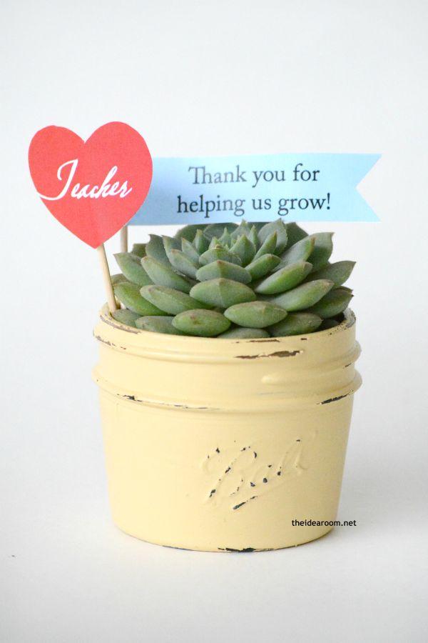 Succulent Gift Idea for teacher appreciation