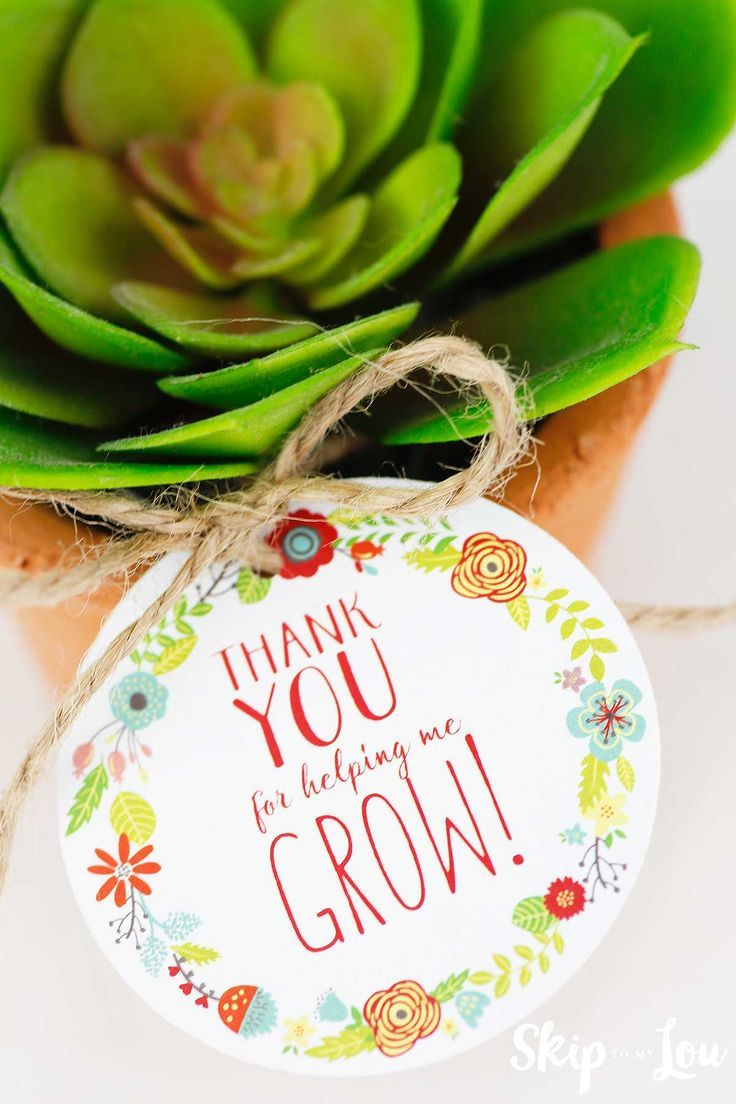 Thank you for helping me grow teacher appreciation gift tag with a succulent in ...