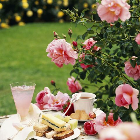 Country Living's Best Mother's Day Ideas