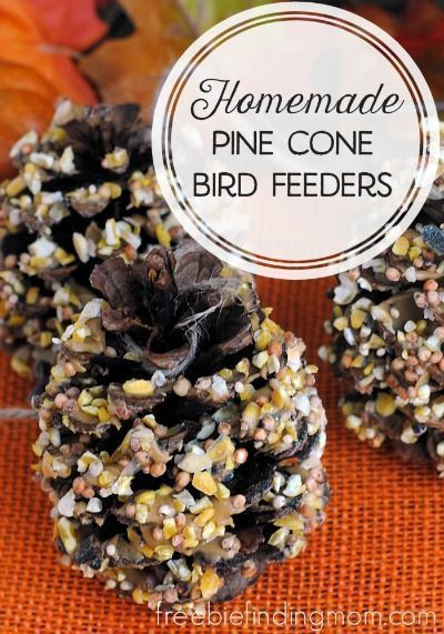 Homemade Pine Cone Bird Feeders - Mother nature provides the main