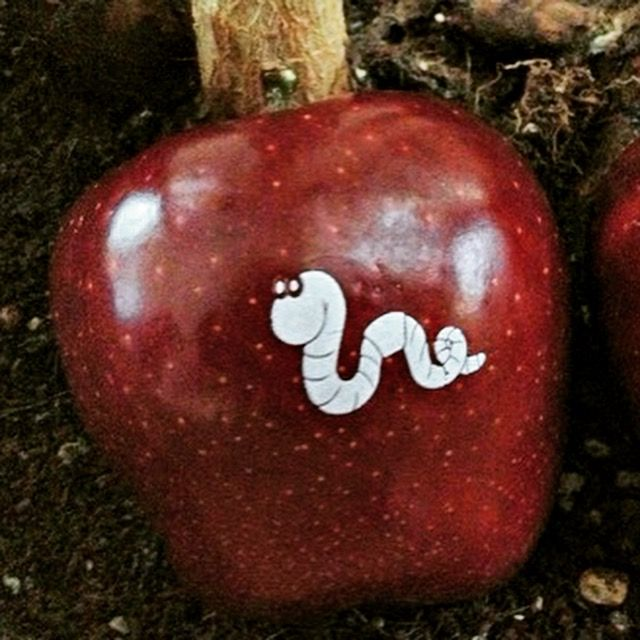 Fruit Monograms | Healthy Branding Ideas | Healthy Corporate Gifts | Monogrammed...