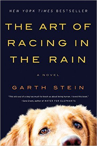 The Art of Racing in the Rain Book Review