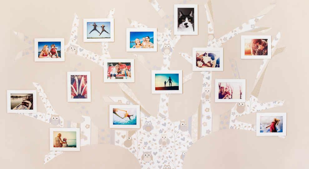 polaroid pictures decoration